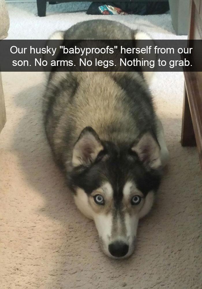 Husky Post