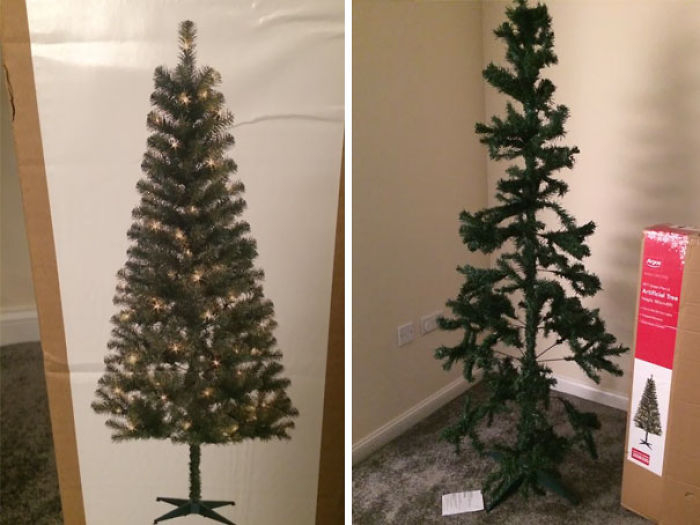 Expectations Vs. Reality: Christmas Tree