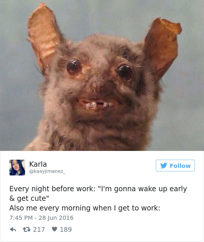 Funny Work Memes: 61 Funny Memes About Work That You Should Laugh At Instead
