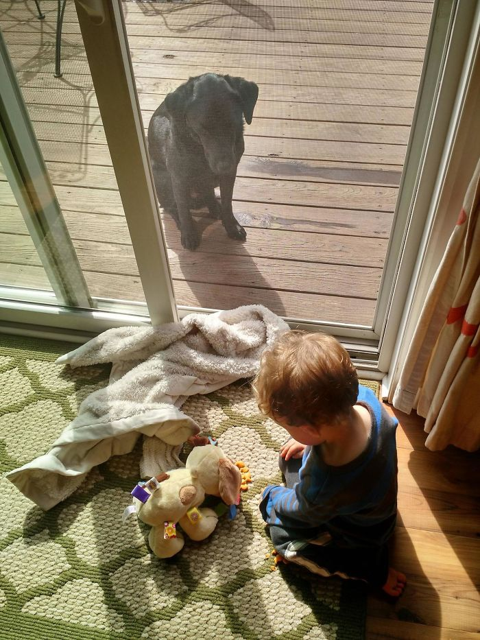 My Son Feeding His Fake Dog Goldfish While His Real Dog Sits Outside, Pissed