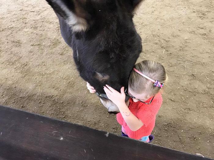 therapy-donkey-helps-girl-speak-amber-8
