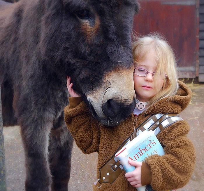 therapy-donkey-helps-girl-speak-amber-11