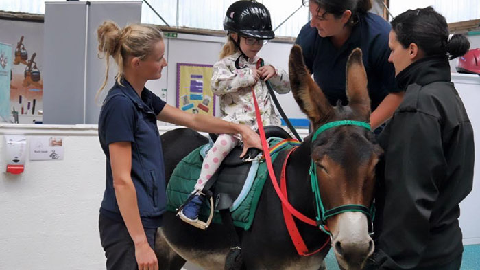 therapy-donkey-helps-girl-speak-amber-5