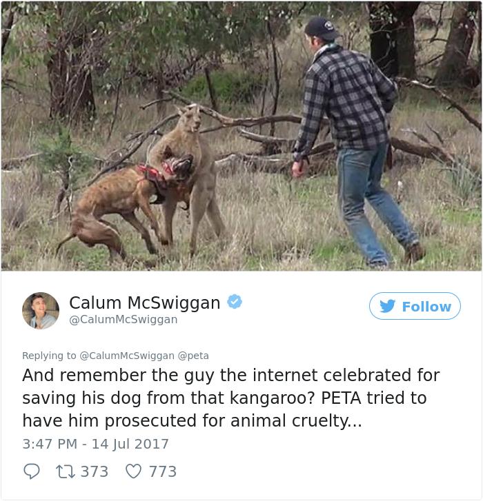 guy-sums-up-peta-twitter-calum-mcwiggan (6)