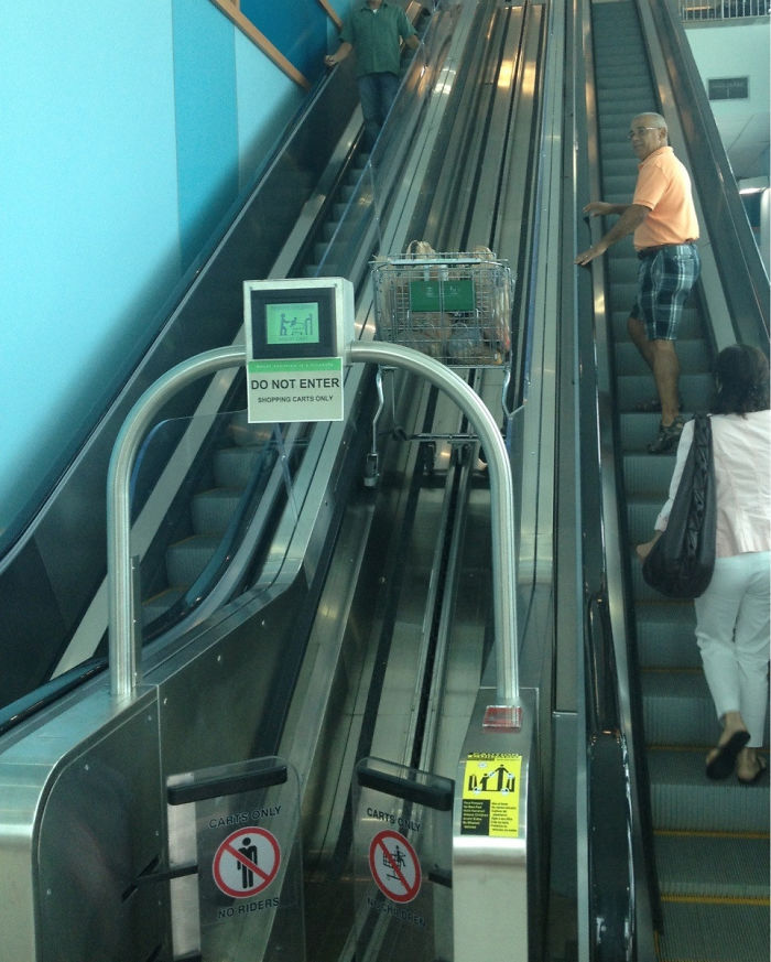 The Grocery Store I Went To Earlier Had A Special Escalator For Your Shopping Cart.