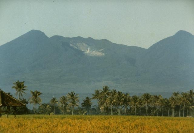 Mt. Papandayan