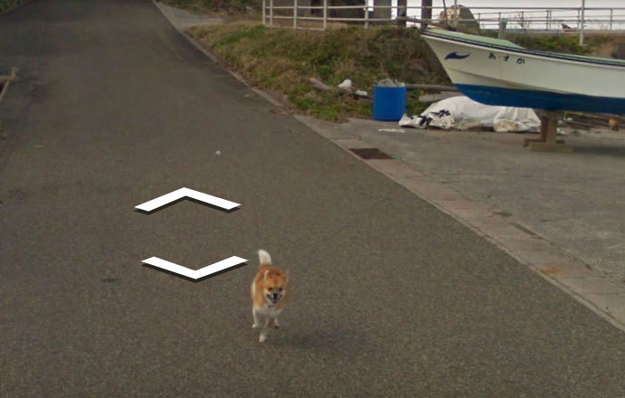 tiny-dog-follows-street-view-car-kagoshima-japan006